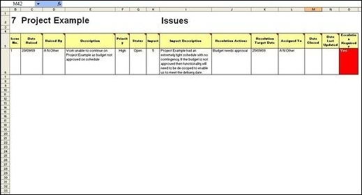 Project Management Report, Project Issues which need to be updated or added to each week